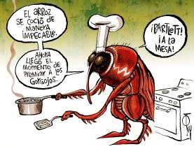 COCINANDO LA TRANSFORMACIÓN